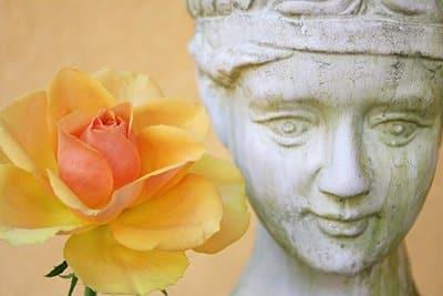 Überblick: Mediation & Streitschlichtung